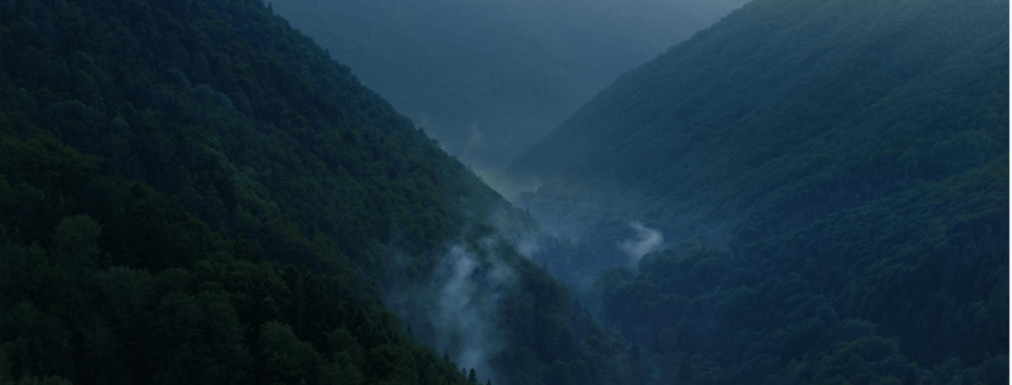 בולגריה הופכת למדינה אדומה